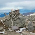 озеро скелетов